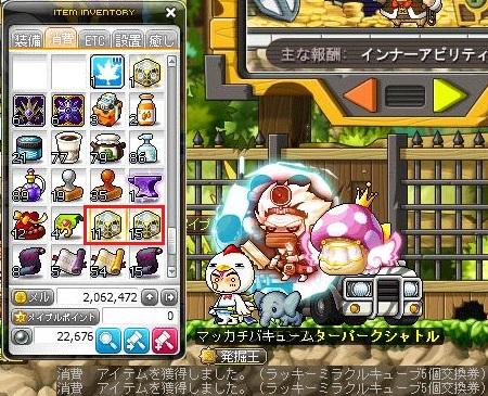 Maple15313a.jpg