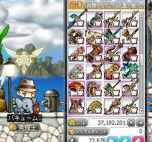 Maple15373a.jpg