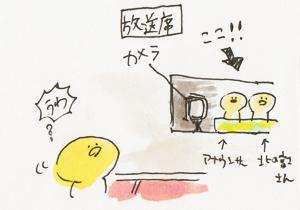 kokugikan3.jpg
