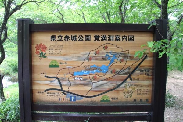 16満州餃子22