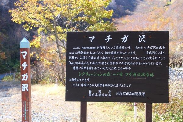 15一ノ倉沢11