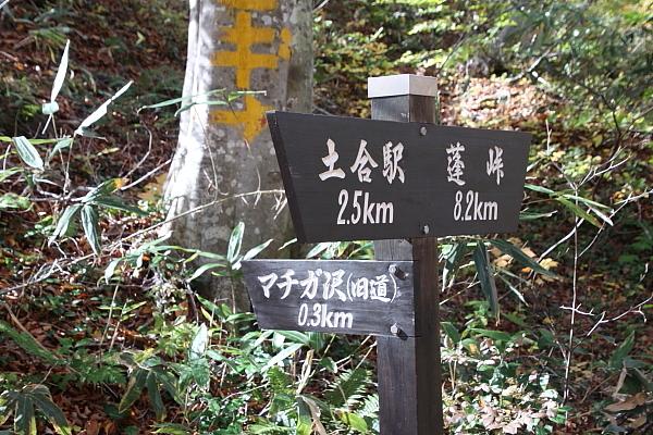 15一ノ倉沢27