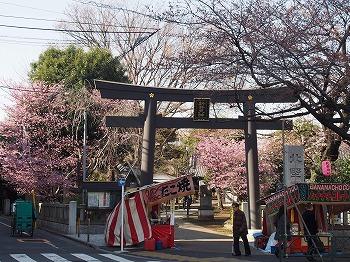 araiyakushi18.jpg