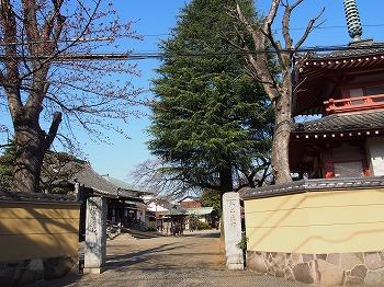 araiyakushi20.jpg