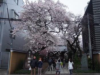 araiyakushi22.jpg