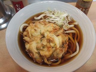 nakano-ajisai6.jpg
