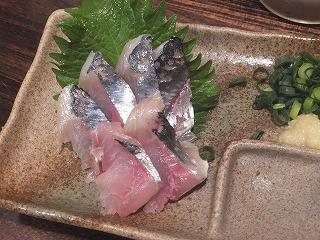 saginomiya-hirameita3.jpg