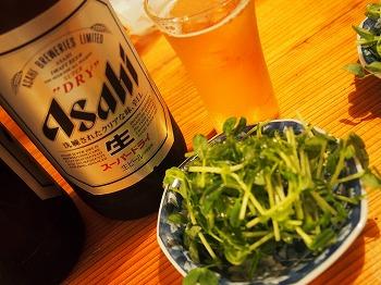 yoyogi-bakagyu4.jpg