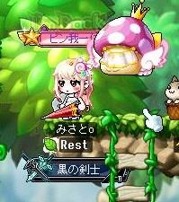 Maple160628_210117.jpg