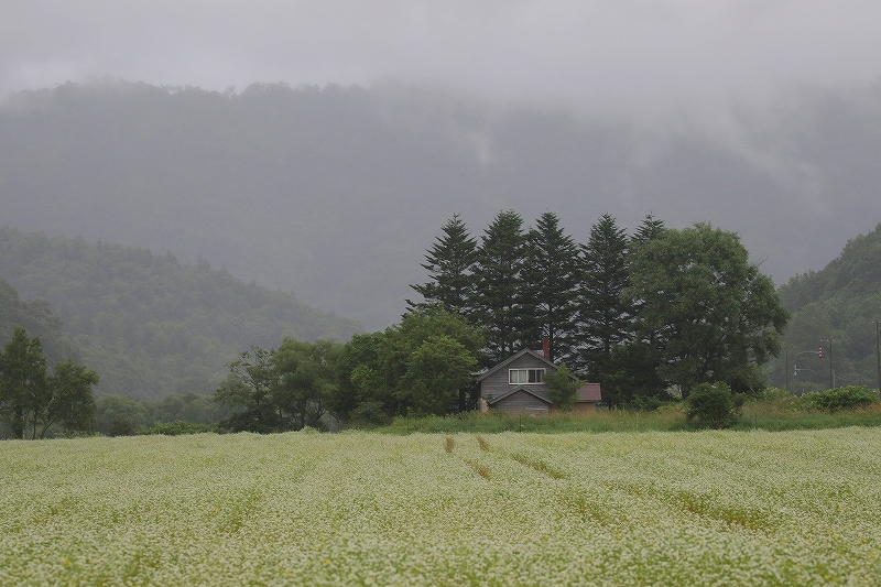 s-3I4A6130.jpg
