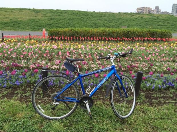 サイクリング4-10 (1)