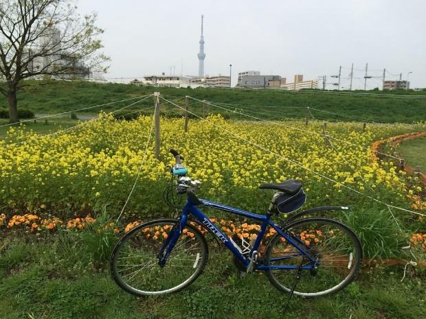 サイクリング4-10 (3)