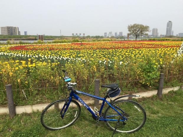 サイクリング4-10 (9)