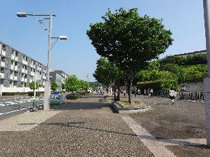 愛野駅~エコパアリーナ (8)
