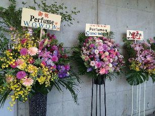 Perfumeライブ@幕張 (15)