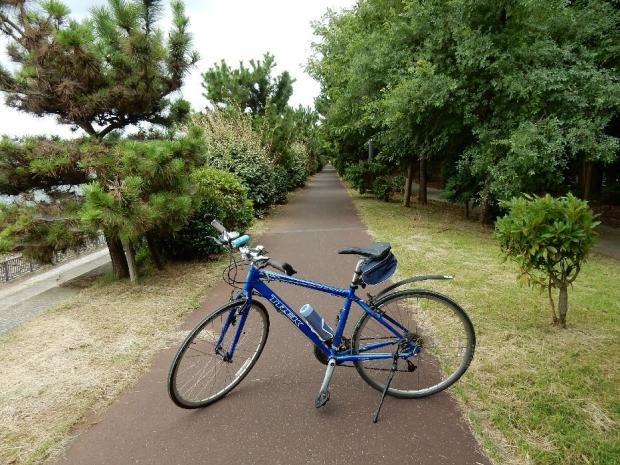 サイクリング7-31 (18)