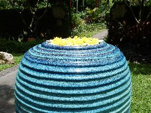 アナンタラ浮き花 (7)
