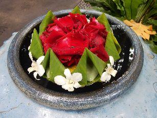 アナンタラ浮き花 (10)