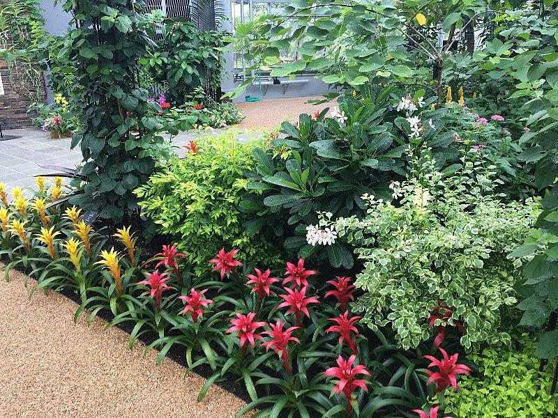 植物園26