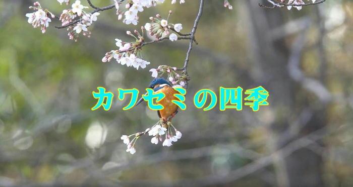 20160721-a.jpg