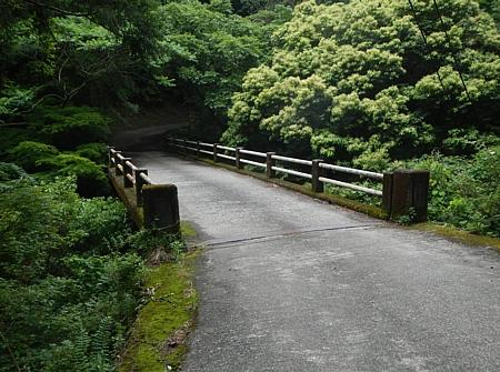 201606_Shiranuta_12.jpg