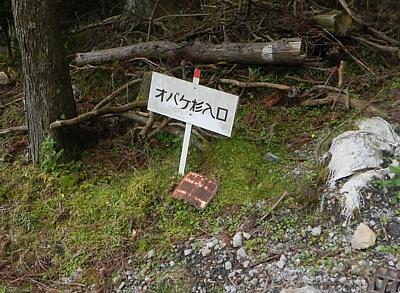 201606_Shiranuta_35.jpg