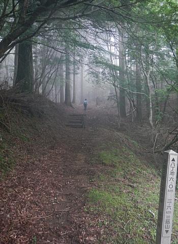 201606_Shiranuta_47.jpg