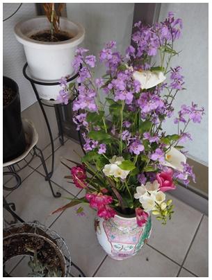 北堀さん玄関の花1