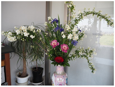 北堀さんの花1
