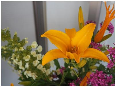 23日北堀さんの花3
