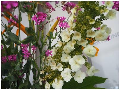 23日北堀さんの花4