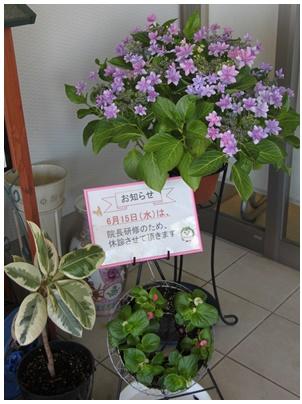 ダンスパーティ(紫)7