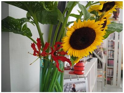 ひまわりと赤い花