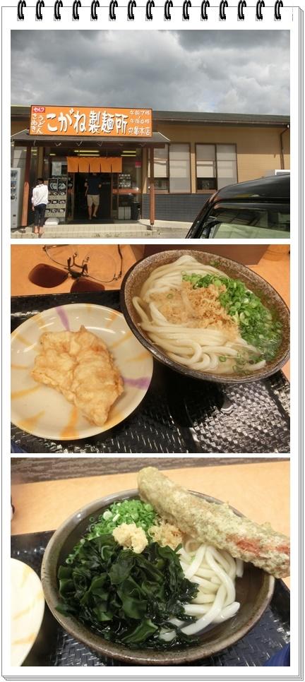 9月4日こがね製麺所