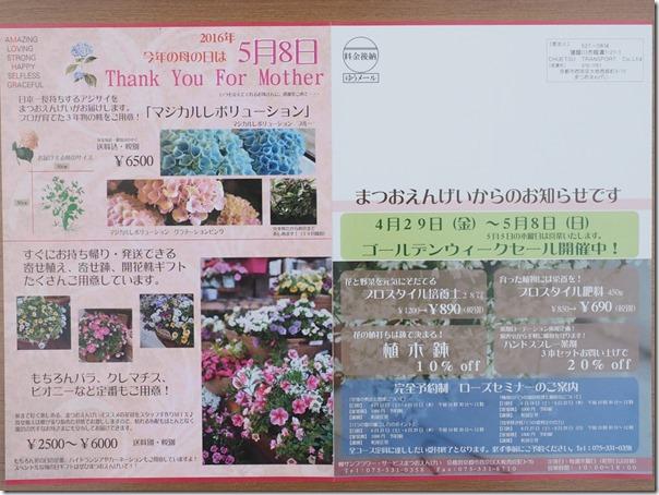 P4250063