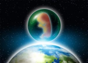 胎児 宇宙
