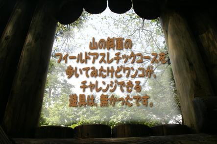 1002-9.jpg