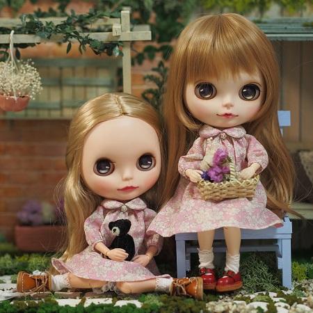 ブログ衣替えのブラ姉妹