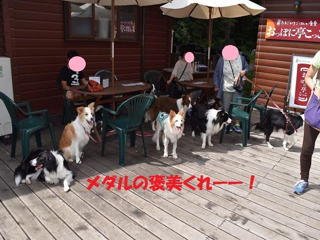 20160810_2295.jpg