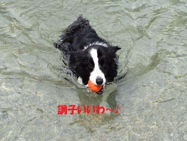 20160810_3639.jpg