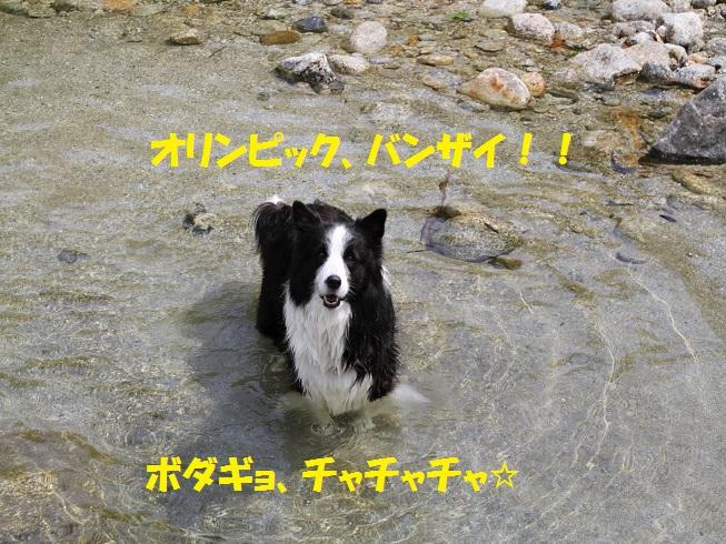 20160810_9610.jpg
