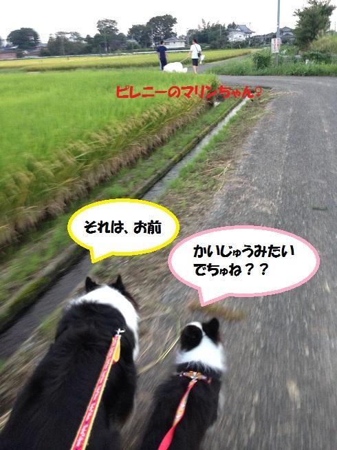 IMG_0566.jpg