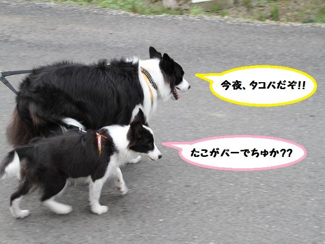 IMG_9625.jpg