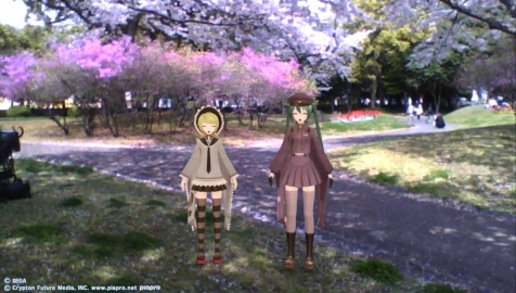 別府公園で花見