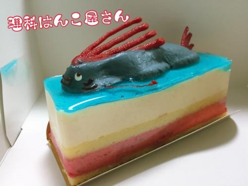 ハンズケーキ
