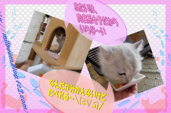omotyabako004.jpg