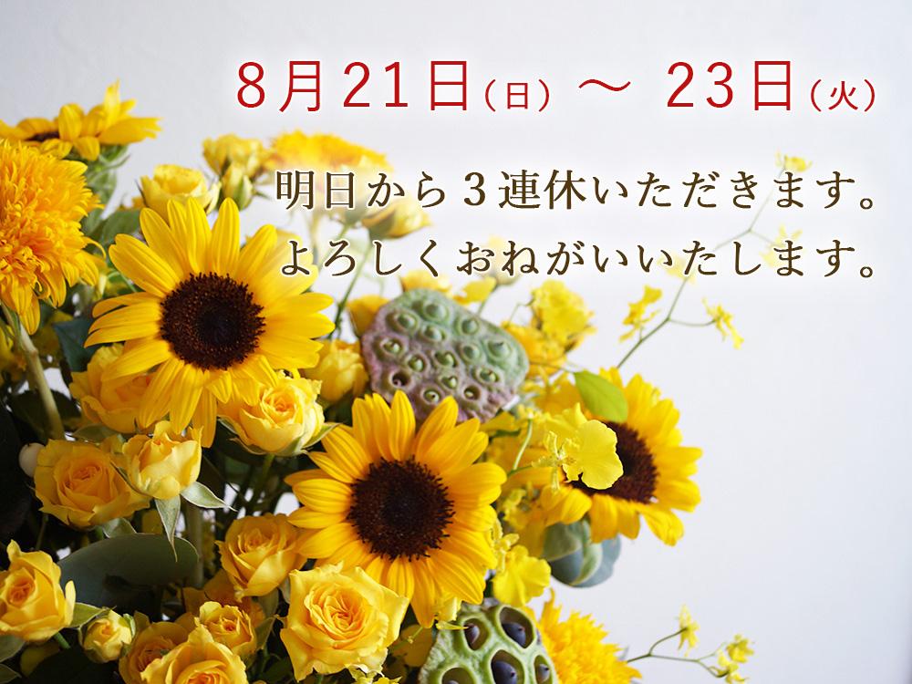 ミルエクラ.連休のお知らせ