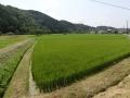 H280806 勝央町小矢田_R