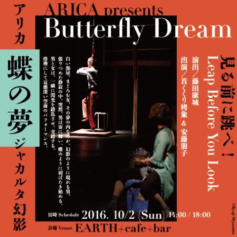 蝶の夢1縮小