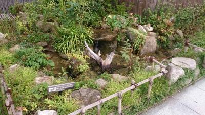 鉄道神社12